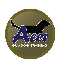 Acer, Gundog, Training, Franchise